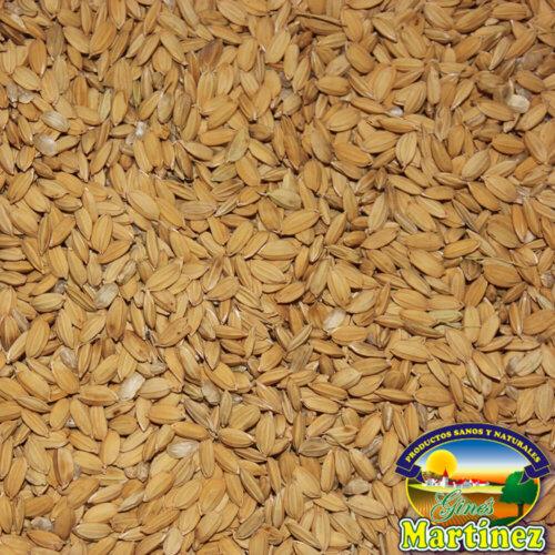 arroz cascara